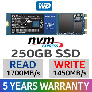 WD Blue SN500 250GB NVMe SSD